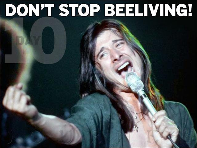 Beelive!