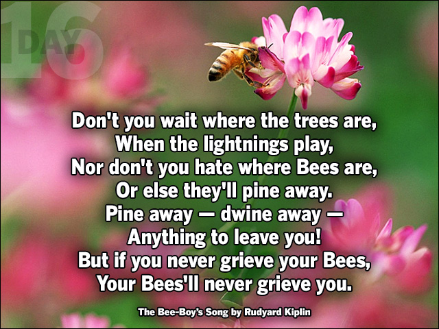 Never grieve the bees!